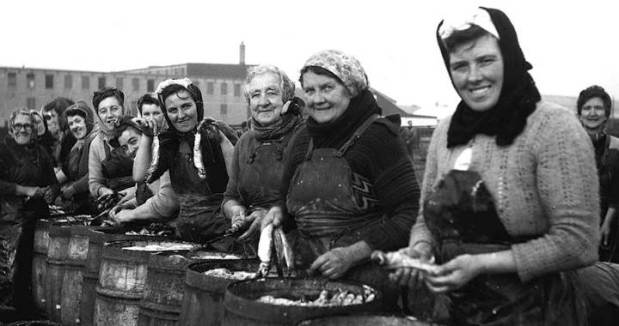 herring women